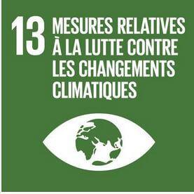 L'IAHV travaille sur des initiatives de conservation de la nature pour aider à lutter contre le changement climatique